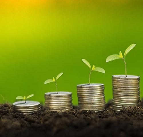 Bildhafte Darstellung von Wachstum einer Vermögensanlage durch zeigen von kleinen wachsenden Pflänzchen und Geld